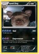 Upset Dog