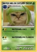 WATER MELON CAT