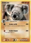koala lvlx