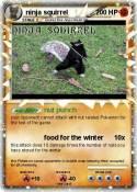 ninja squirrel