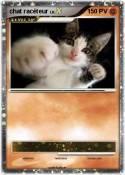 chat racéteur