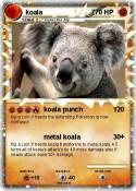 koala 7