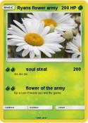 Ryans flower