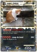 super chaton