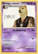 Mr.Doge