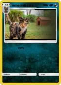 minecraft cats