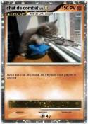 chat de combat