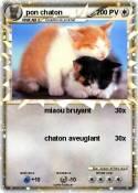 pon chaton
