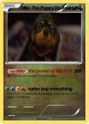 Milo The Puppy