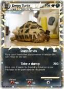 Derpy Turtle