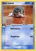 Bébé chatont