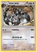 kitten army