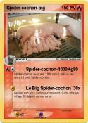 Spider-cochon-big