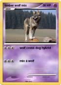 timber wolf mix