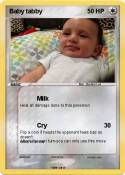 Baby tabby