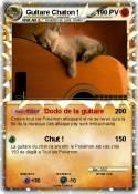 Guitare Chaton