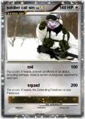 soldier cat sm