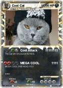Cool Cat 11