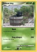 Colonel dog