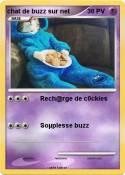 chat de buzz