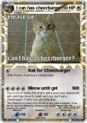 I can has cheez