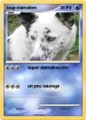 loup-dalmatien