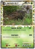 marmote niv X
