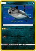 dogeshark