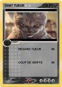 CHAT TUEUR