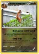 Super orangutan