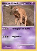 puma est