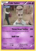 I Like Turtles