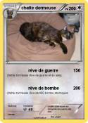 chatte dormeuse