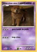 chow-chow sims