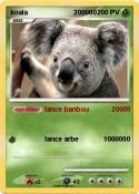 koala 200000