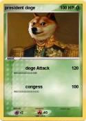 president doge