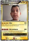 Ali destroy