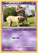 mastiff à