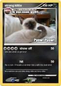 strong kittie