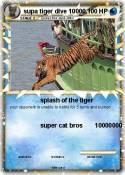 supa tiger dive