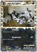 cage des lapins