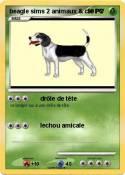 beagle sims 2