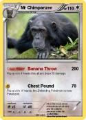 Mr Chimpanzee