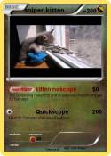 sniper kitten