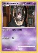 mastiff en