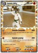 karate kitty