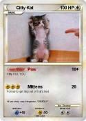 Citty Kat