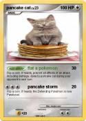 pancake cat