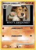 awesome puppy