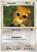 chat potte